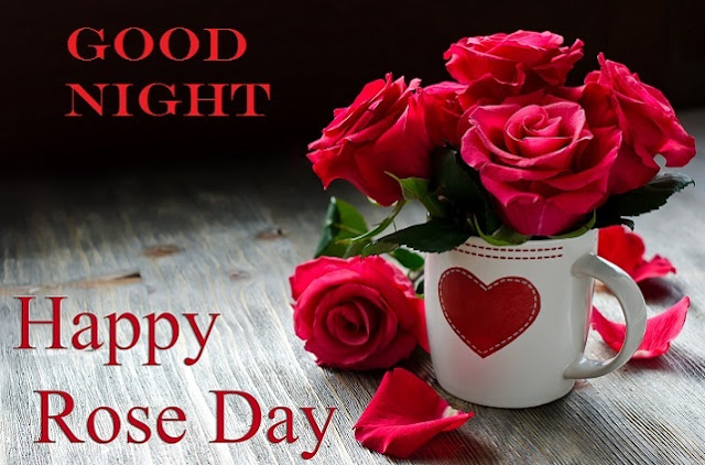 Rose Day Good Night Whatsapp Status DP