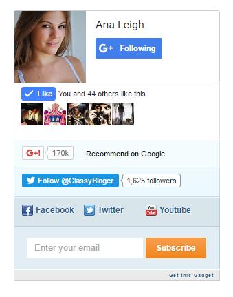 Mashable Style Social Subscription Widget