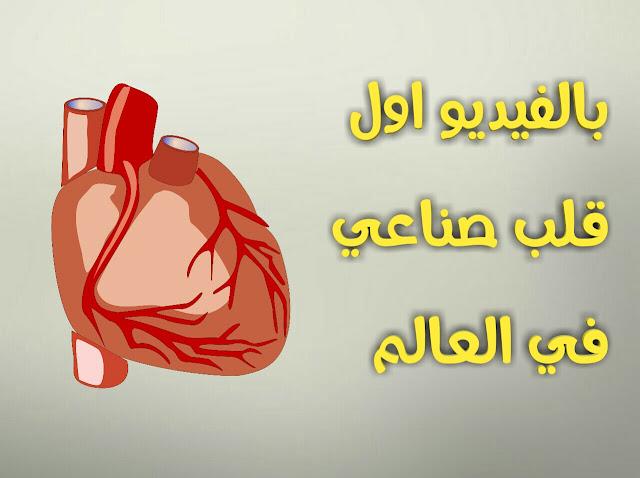 بالفيديو،هذا اول قلب صناعي في العالم و الذي صنع من مادة السيليكون