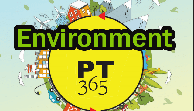 vision-pt-365-2018-environment