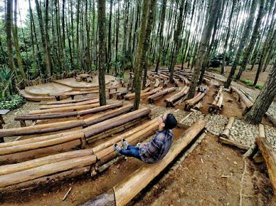 Hutan Pinus Mangunan Imogiri
