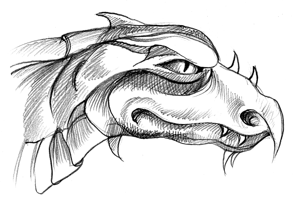 I Can Draw A Dragons Head