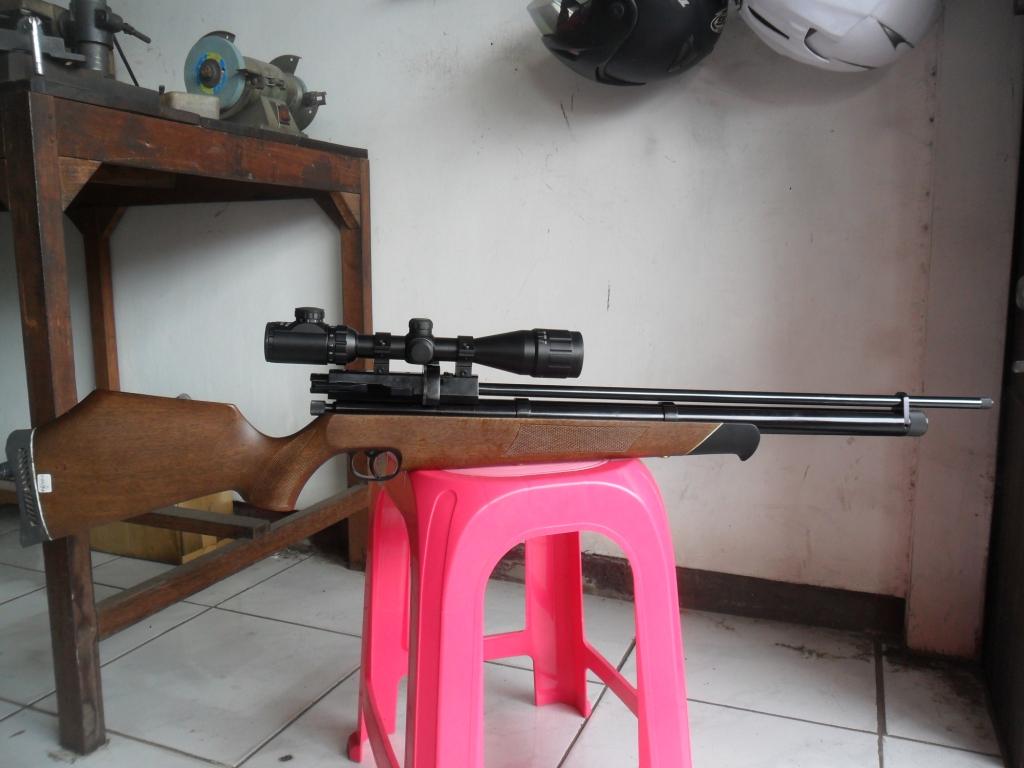GUNS AND HOBBIES: SENAPAN PCP MOD. AIR ARM