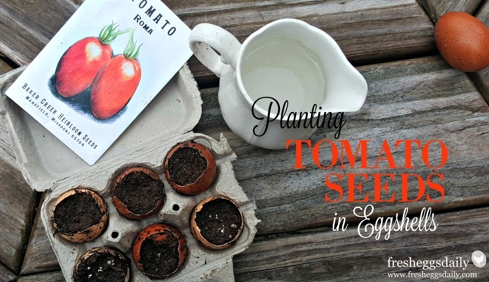 how to avoid tomato rot