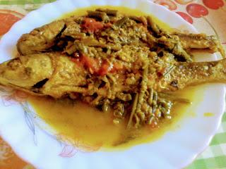 Fish curry with ferns and tomatoes | Dhakia aru bilahir logot masor torkari