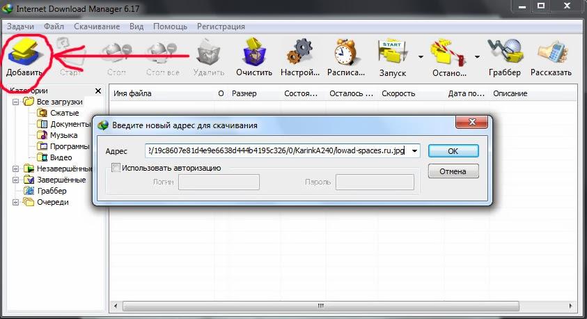 Вставка ссылки на скачивание в Internet Download Manager.