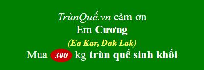 Trùn quế Ea Kar