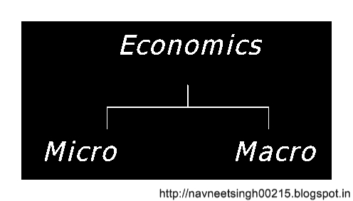 Difference Between Micro and Macro Economics