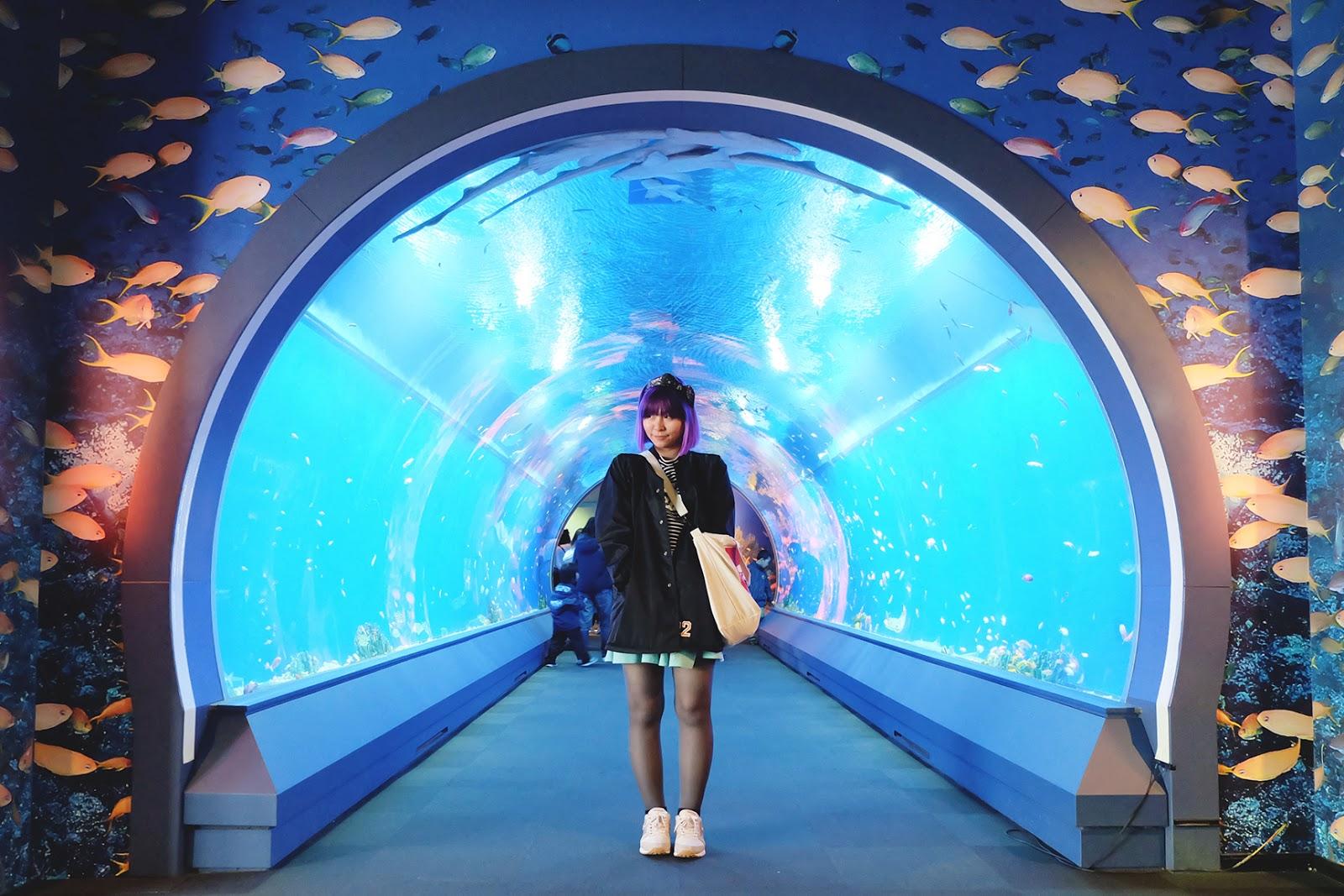 Osaka Aquarium Kaiyukan Aqua Gate | www.bigdreamerblog.com