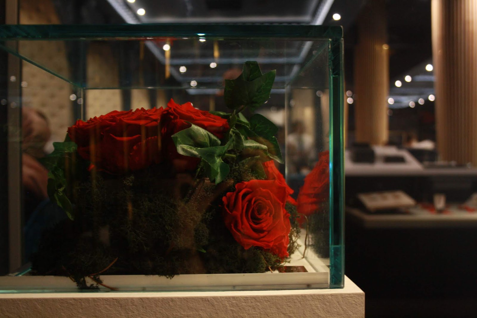 red roses in a display case at haute dolci, Leicester