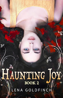 HAUNTING JOY: BOOK 1 by Lena Goldfinch, Novels for Teens