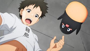 Hataraku Saibou!! Season 2 Episode 4