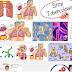 Pencegahan dan Pengendalian Infeksi Dalam Penerapan Kolaborasi TB dan HIV