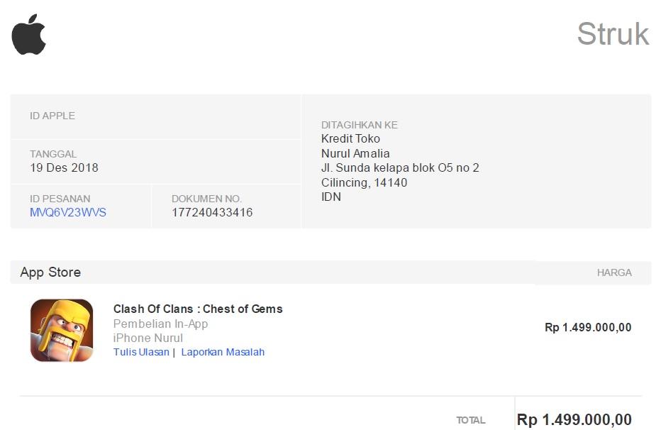 Wonderful Life Of Ps4 Player Email Penipuan Pembelian Aplikasi