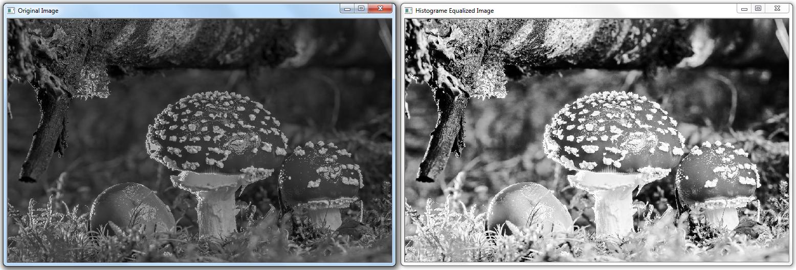 Invert Color Image Opencv Python