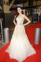Rukshar Mir designer Anarkali Gown at 64th Jio Filmfare Awards South  2017 ~  Exclusive 118.JPG