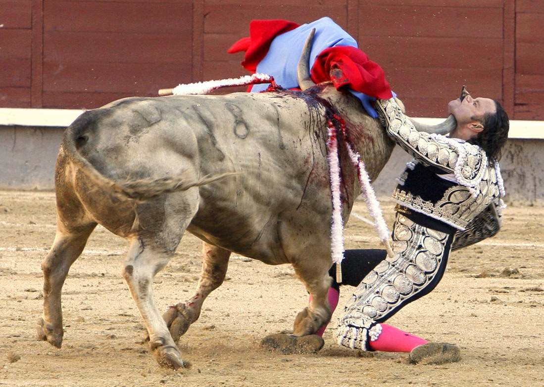 Naked corpses bare the bloody cruelty of bullfighting in pamplona