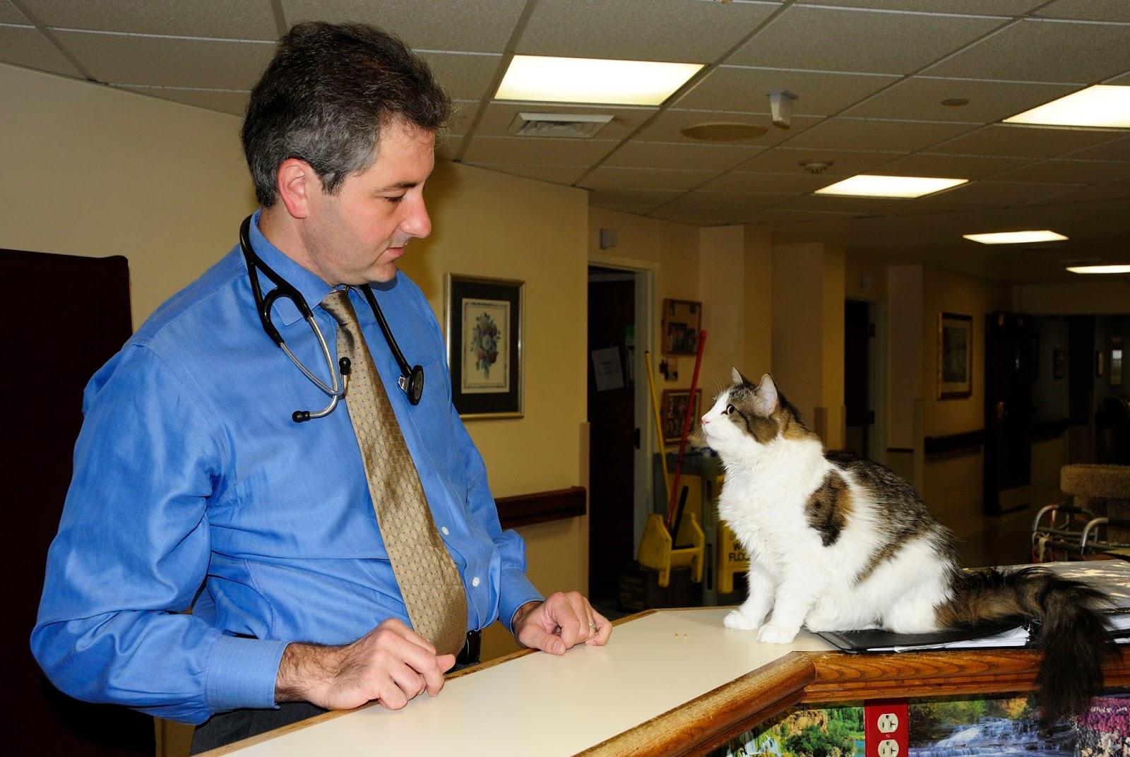 Dr. David Dosa y Oscar. Créditos:daviddosa.com