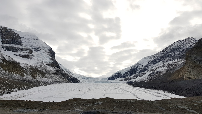 Athabasca Glacier Tongue