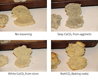 Biscuit texture comparison: no leavening, calcium carbonate, and baking soda