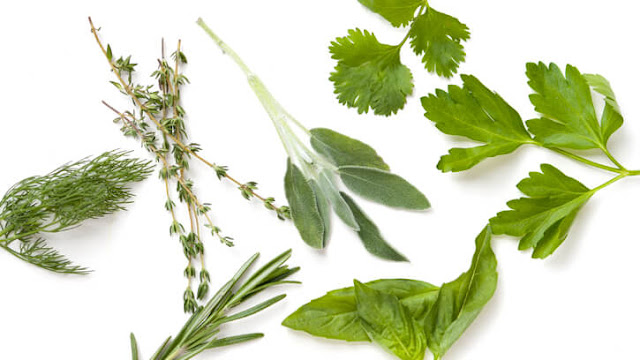 Use Fresh Herbs, healthy eating, weight loss