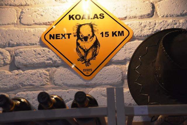קואלה אוסטרליה koala australia
