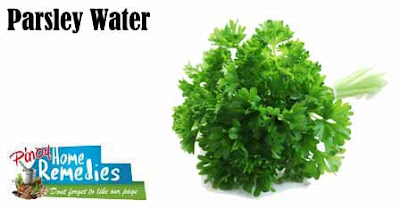 Home Treatments For Intestinal Parasites (worms) In Dogs: Parsley Water