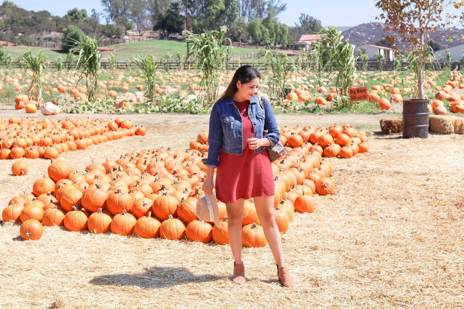 bates nut farm pumpkin patch, what i wore to the pumpkin patch