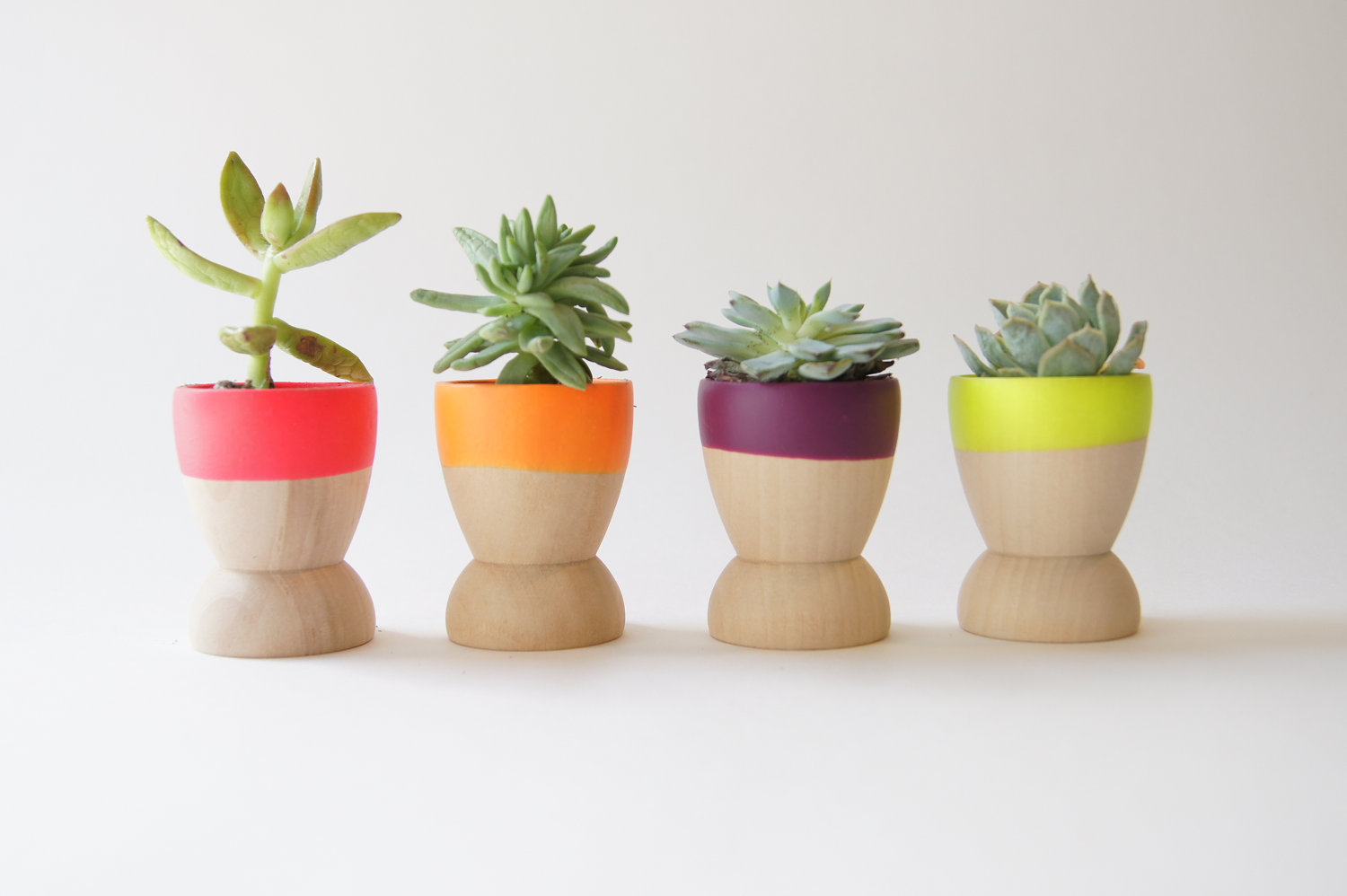 dipped wooden succulent planters