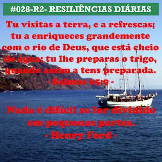 028-R2- RESILIÊNCIA 2