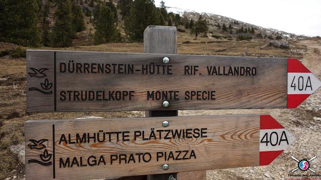Strudelkopf Monte Specie mtb