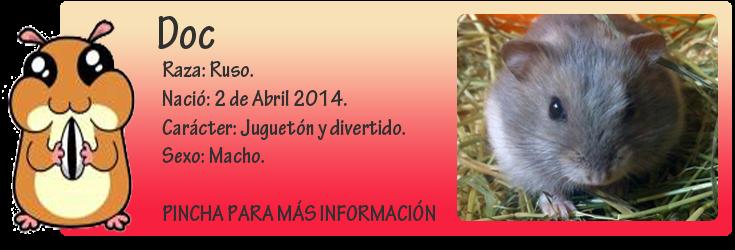 http://almaexoticos.blogspot.com.es/2014/05/doc-hamster-precioso-en-adopcion.html