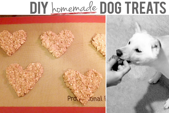 Homemade Dog Treat Recipe // Bubby & Bean