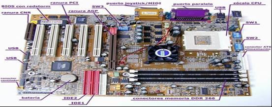 Ensamble Del Equipo De Computo: Componentes De Una Tarjeta