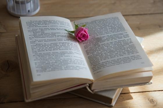 Baca Novel Online