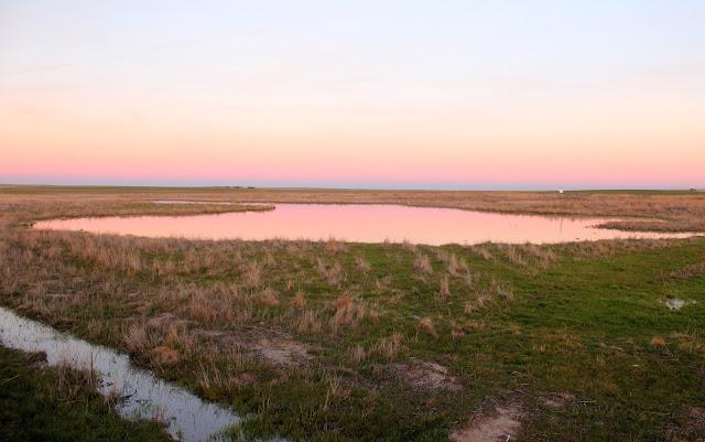 Arrebol en las lagunas de Villafáfila