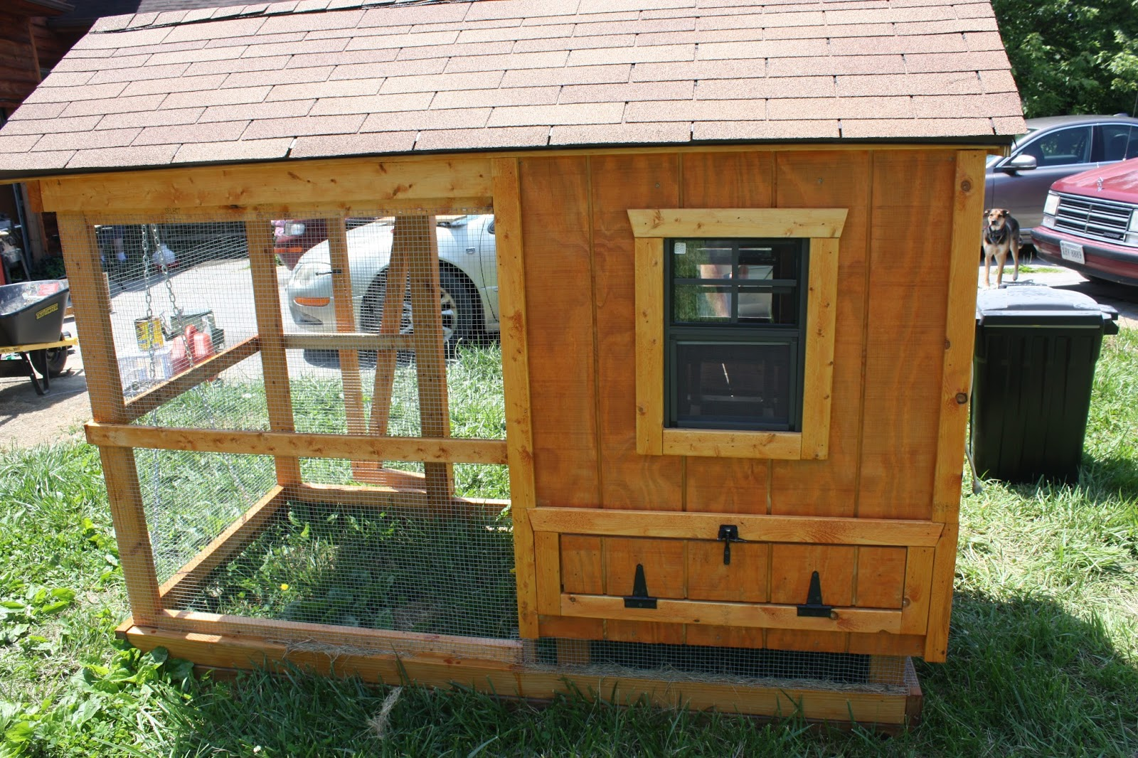 Building A Chicken Coop For Dummies Chicken Coops And The Land Of The Chicken Ladies