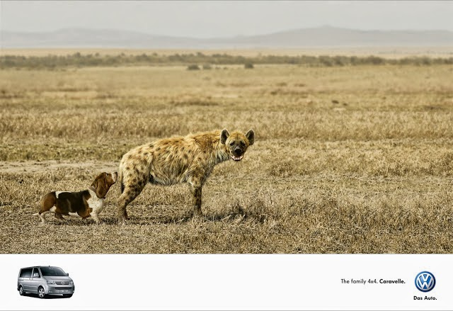 Funny Volkswagen Caravelle advert - Dog and hyena joke picture