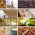 How to control diabetes naturally at home 12 tips for diabetes prevention sikhe all in hindi   diabets ko ghar me he jaad se khatam kare