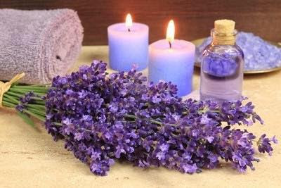 My home business - lavender products