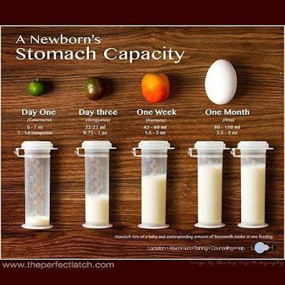 Capacidade do estômago do recém-nascido