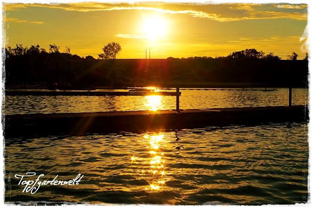 Wallersee, Sonnenuntergang