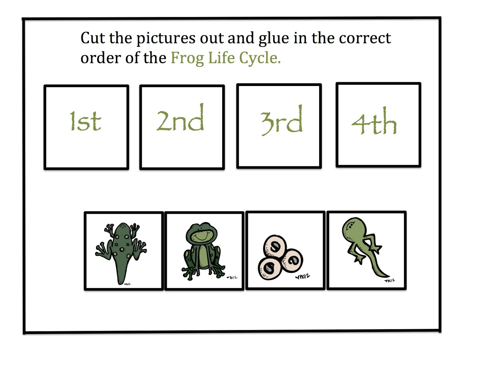 Life Cycle Of A Plant Worksheet Cut