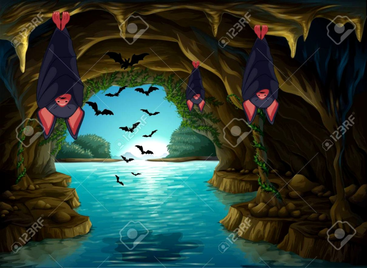 bats living in the dark cave illustration royalty free cliparts [ 1209 x 881 Pixel ]