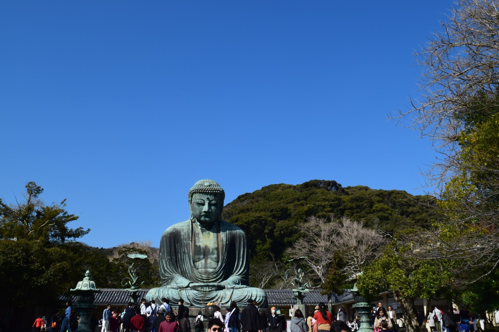 what to do in Kamakura