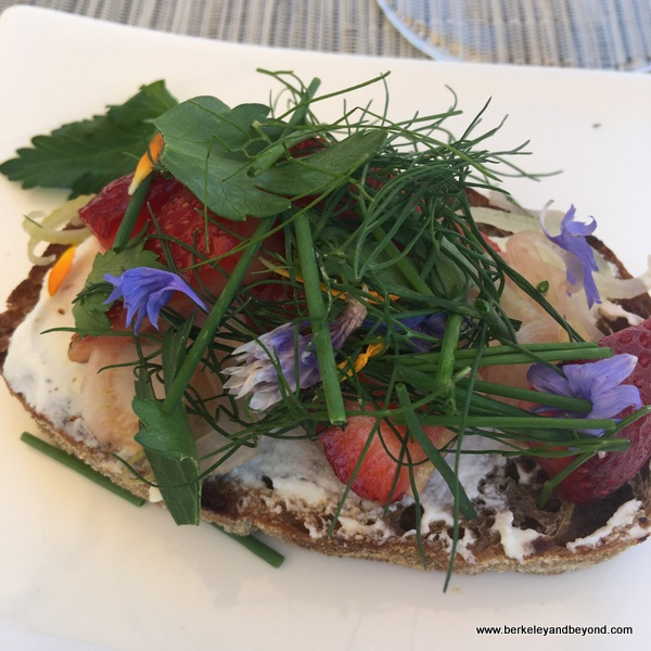 colorful bruschetta is part of paired tasting at Kendall-Jackson Wine Estate & Gardens in Fulton, California