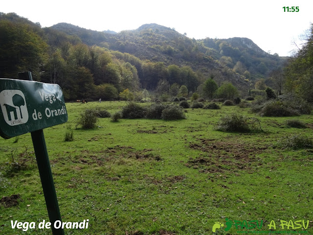 Peña Sienra desde Covadonga: Vega de Orandi