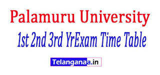 PU UG 1st 2nd 3rd Yr Annual Practical Exam Time Table 2017