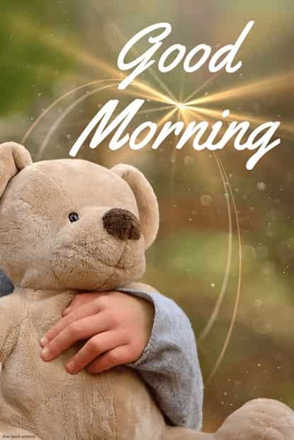 teddy bear images hd