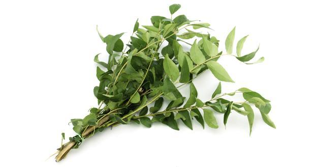 Advantages Of Curry Leaves